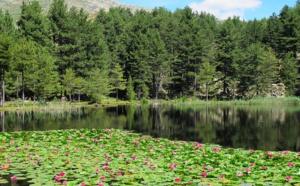 Le lac de Crenu